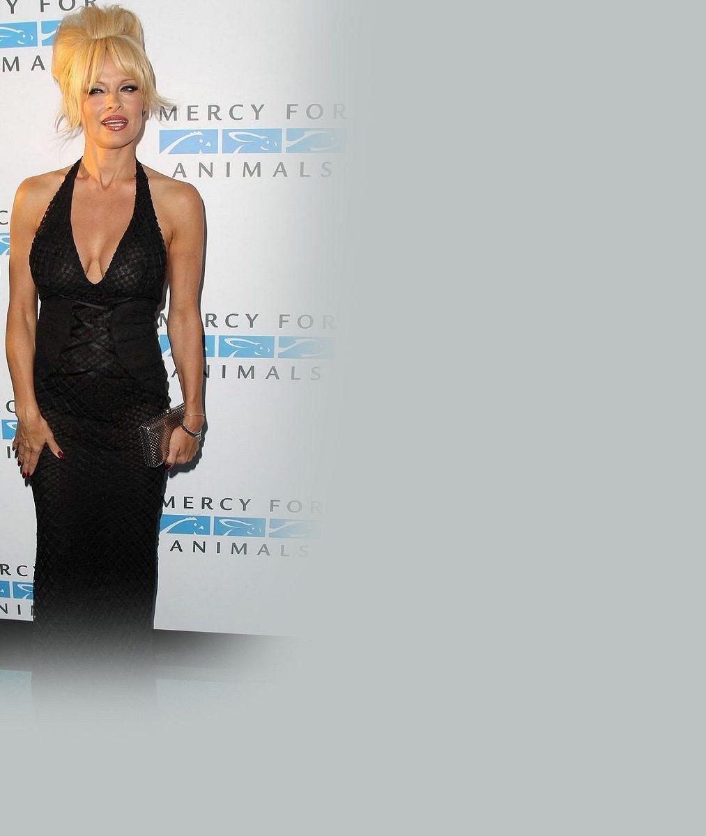 Návrat do starých dobrých časů: Pamela Anderson nasadila paruku a vystavila své legendární silikony v průhledných šatech