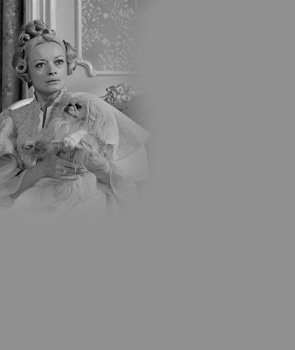 Hana Brejchová (69) se bude vdávat! Proč na svatbu nepozve znesvářenou sestru Janu (76)?
