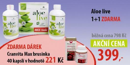 Posílit imunitu můžete jednoduše pomocí šťávy z Aloe
