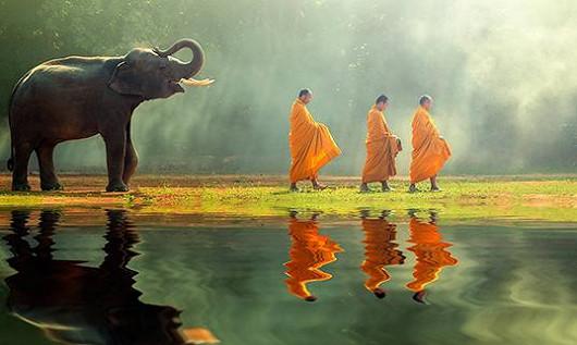 Srí Lanka – čajový ostrov