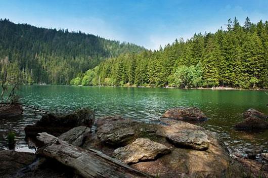 Dovolená s polopenzí uprostřed nádherné šumavské přírody