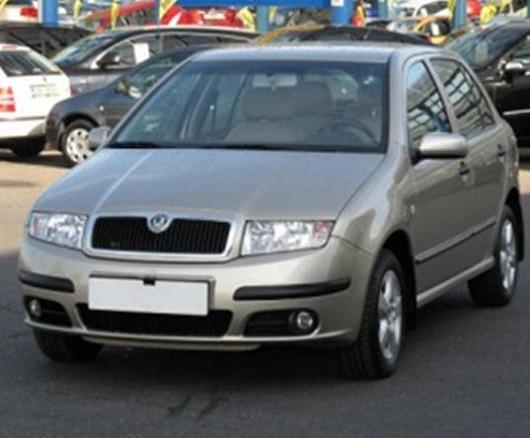 Vyhledávaný model Škoda Fabia 1.2 hatchback, z roku 2004, se servisní knížkou, najeto pouze 63 690 km