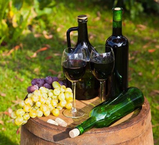 Pobyt v penzionu na jihu Moravy spojený s neomezenou konzumací vína