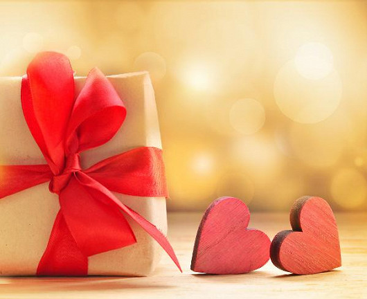 Využijte naší vánoční nabídky a získejte od nás dárek - 2 měsíce členství v hodnotě 602 Kč zdarma!