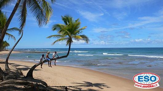 Není moře jako moře. Karibik je k mání i pod dvacet tisíc korun!