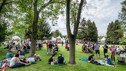 Festival bezplastový