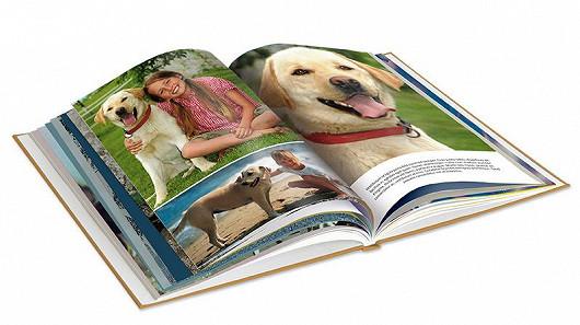 Kniha o mazlíčkovi