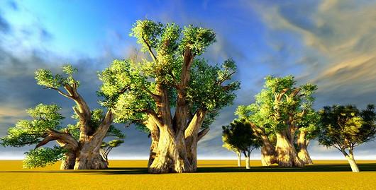 Strom proti vráskám