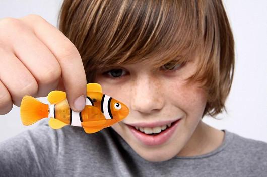 Proč velikonoční ryby?