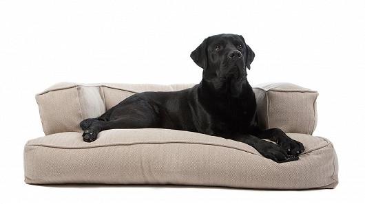 Kvalitní snadno udržované pohodlí pro čtyřnohé členy rodiny