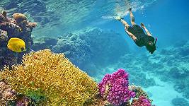 Pouze šnorchl a brýle vám postačí k tomu, abyste spatřili krásy zdejšího podmořského světa.