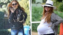 Isla Fisher je po třetím porodu opět jako proutek.