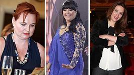 Kdo v roce 2015 bojoval s váhou?