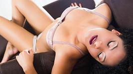 Paničky v domácnosti uspokojují svou chuť na sex díky milencům. Ideálně i několikrát týdně.