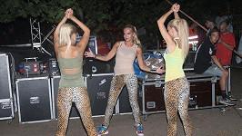 Zdá se, že se budou opět nosit leopardí legíny.