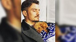 Orlando Bloom s psíkem Mightym