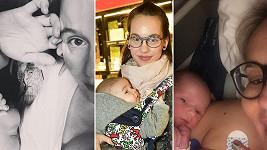 Tento rok porodily své potomky Marie Doležalová, Míša Tomešová i Monika Absolonová.