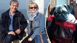 Veronika Žilková řeší opět trable s přepravou dalšího psa do Izraele.