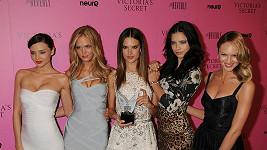 Krásné modelky žárlí na svou úspěšnou kolegyni.