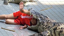Hrátky s krokodýlem
