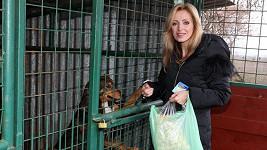 Kateřina Brožová s jedním z opuštěných psů.
