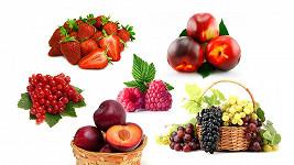 Od nás to roste! Bavte se, žijte zdravě, vypěstujte si sami! Jahody, borůvky, rakytník i broskve