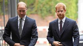 Harry a William si budou muset držet odstup.