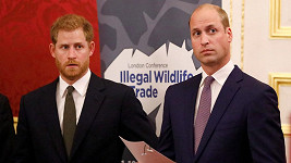 Harry a William údajně zase komunikují.