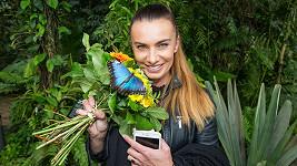 Na výstavě motýlů v tropickém skleníku Fata Morgana.