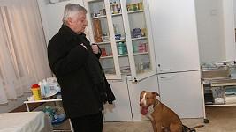 Ladislav Potměšil točil nebezpečnou scénu s bojovým plemenem psa.