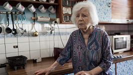 Olga Schmidtová v seriálu Případy 1. oddělení