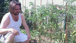 Zdeněk Macura se dal na pěstování rajčat.