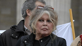 Brigitte Bardot na snímku z roku 2007.