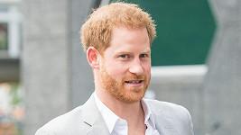 Princ Harry přiletěl do Nizozemska podpořit projekt pro ekologičtější cestování.