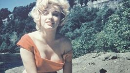 Marilyn Monroe nafotila snímky v roce 1953.
