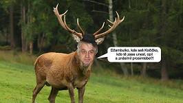 Josef Rychtář nemá rád, když mu někdo připomíná pantofle a parohy.