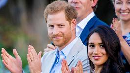 vévoda a vévodkyně ze Sussexu