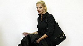 Dara Rolins u soudu (2012)