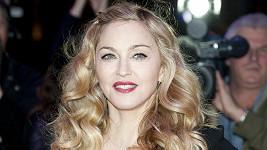 Na Madonnino bezpečí dohlížel pěkný vykuk.