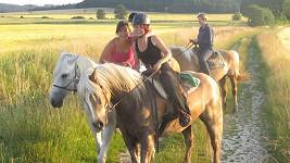 solaříková, koně