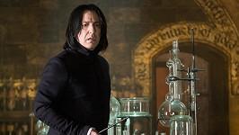Alan Rickman jako Severus Snape