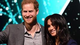 Harry a Meghan se těší na první dítě.