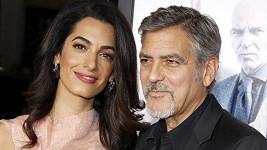 George a Amal Clooney si východu možná zkoušejí zatím nanečisto na pejscích...