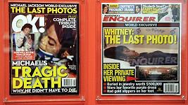 Poslední fotografie Michaela Jacksona a Whitney Houston.