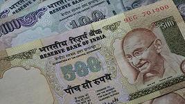 Termiti v indické bance zlikvidovali velké množství peněz. Škoda však mohla být až mnohonásobně vyšší