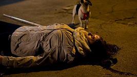 Tohle je jedna z nejdrsnějších scén seriálu Sanitka 2. Ivana Andrlová bude bojovat o život.