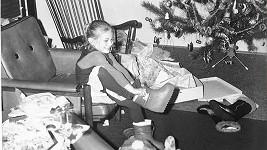 borhyová poznávačka vánoce