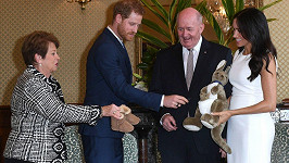 Harry a Meghan dostali od generálního guvernéra Petera Cosgrovea a jeho ženy plyšáka a botičky.