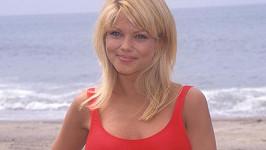 Donna D'Errico