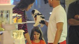 Katie Holmes dcerce pejska ani přes slzy nekoupila.